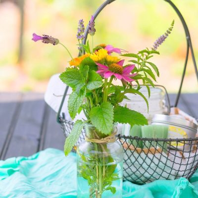 Bouquet Gardens: The Best Cutting Flowers + Growing & Harvesting Tips