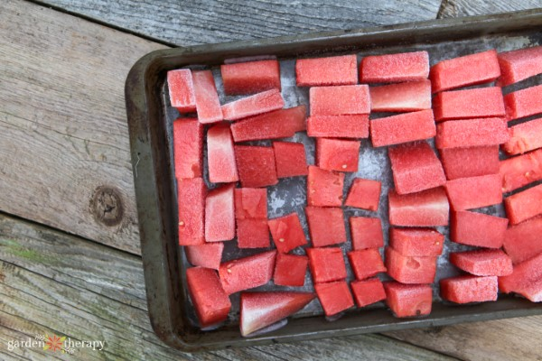 frozen watermelon chunks for making vegan ice cream