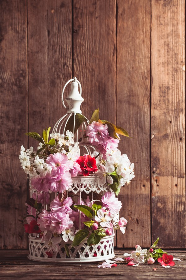 Homegrown flowers planted in a birdcage for a romantic floral arrangement