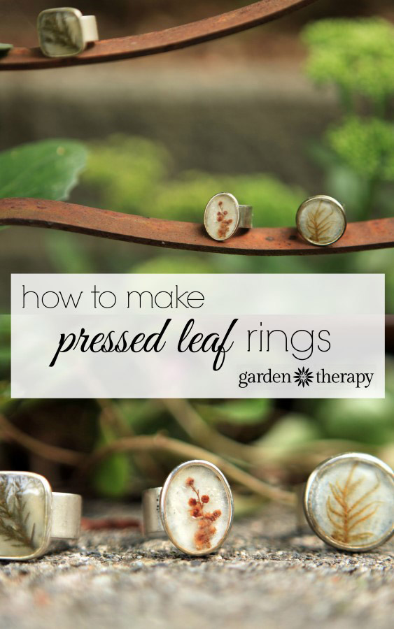 How to Make Pressed Leaf Rings and preserve the garden