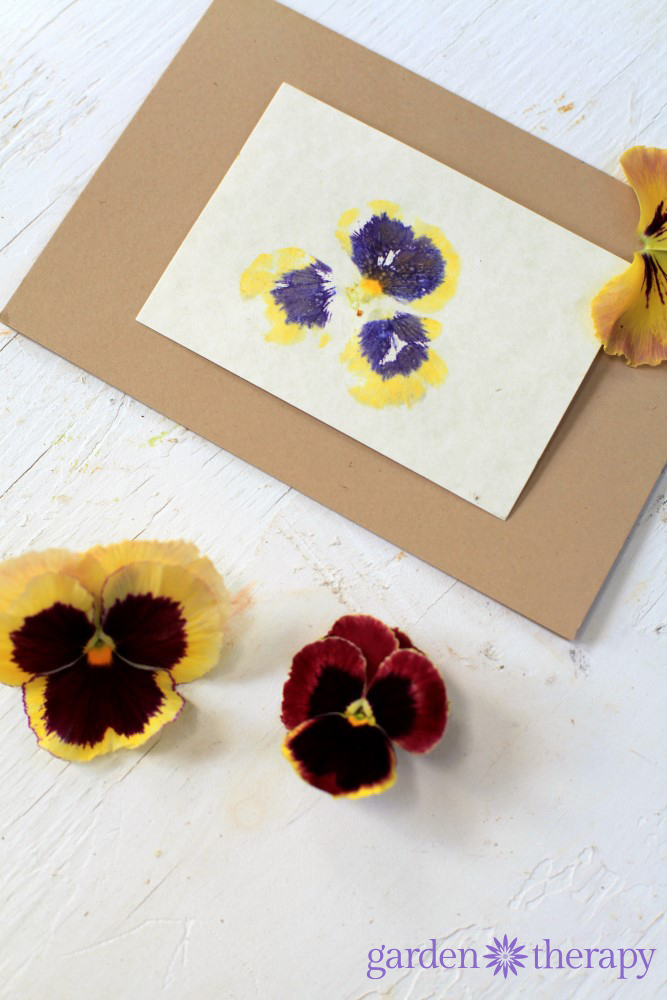 Pretty hammered flower print cards using pansies
