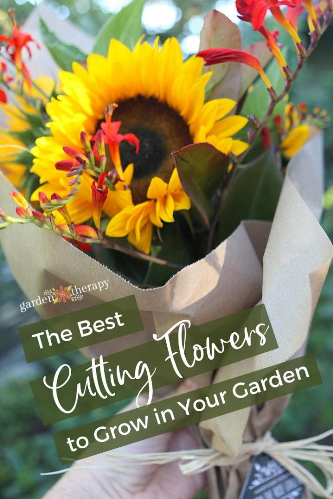 The Best Cutting Flowers to Grow and Harvest from Your Garden