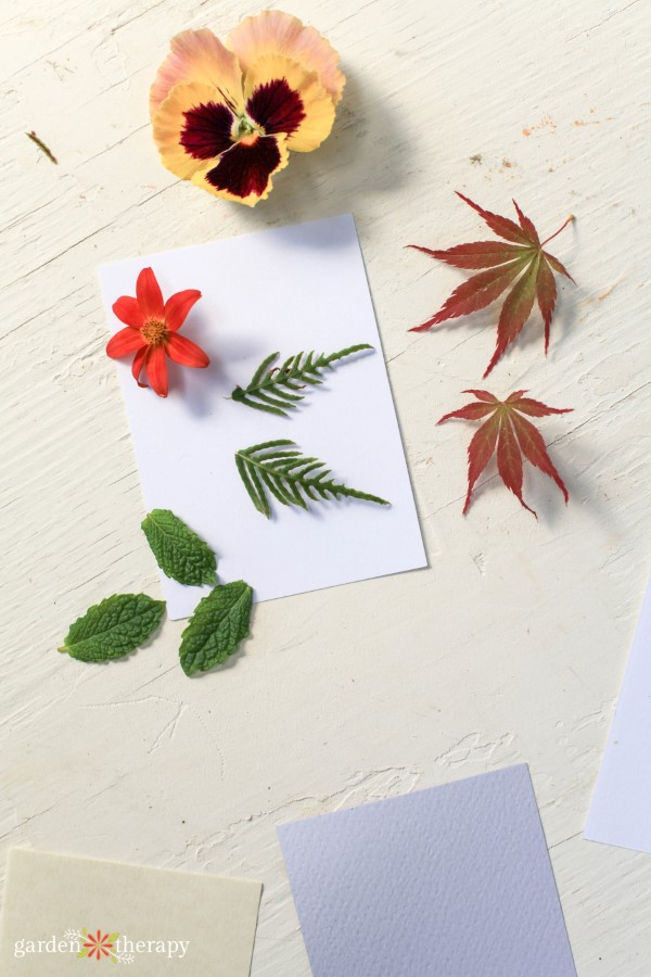 flowers and leaves for printing