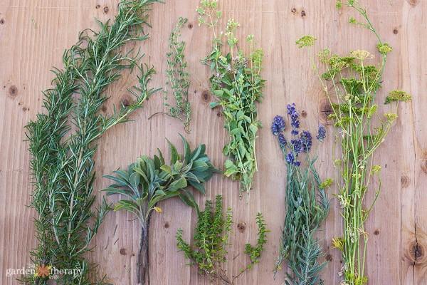 fresh-cut herbs