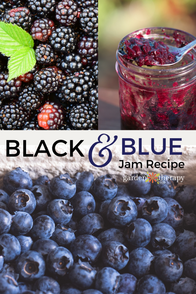 Black and Blue Berry Jam Recipe