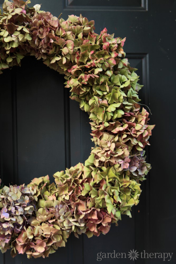 Dried Hydrangea Wreath Project