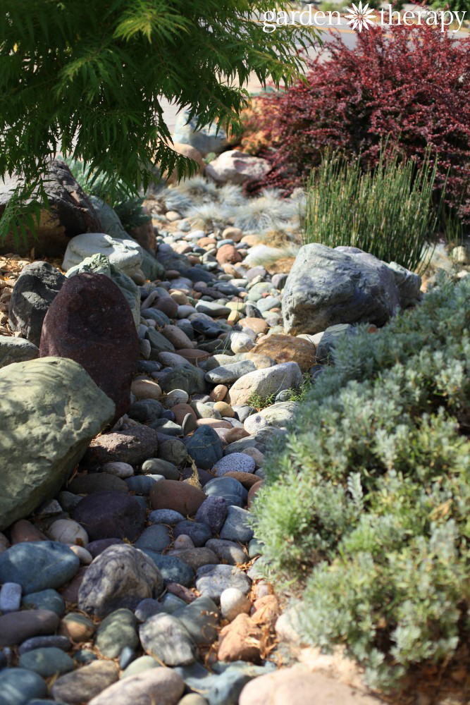 Dry river bed as part of drought tolerant landscape design