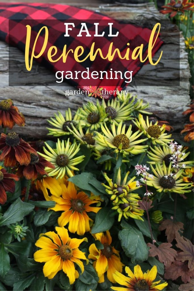 Fall Perennial Gardening Planning and Planting for Budget-Friendly Design