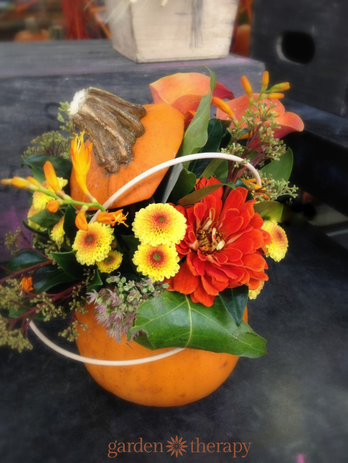 Gorgeous pumpkin flower arrangenment