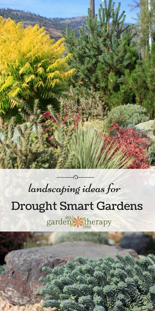 Inspiration and ideas for beautiful water-wise landscaping ideas