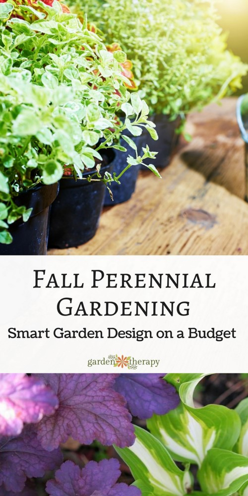 Planning the garden in the fall can help you grow a beautiful garden on a budget (or free!)