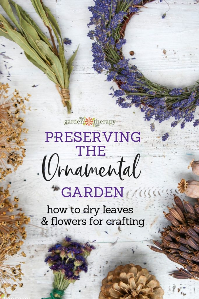 "Various dried flowers and seed heads with copy ""Preserving the Ornamental Garden: How to Dry Leaves and Flowers for Crafting"""