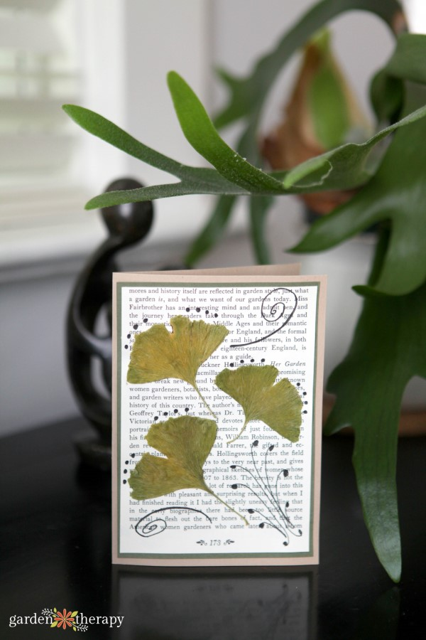 Greeting card with pressed leaves from the book Garden Made