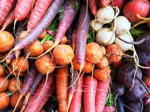 root vegetables grown by direct sowing