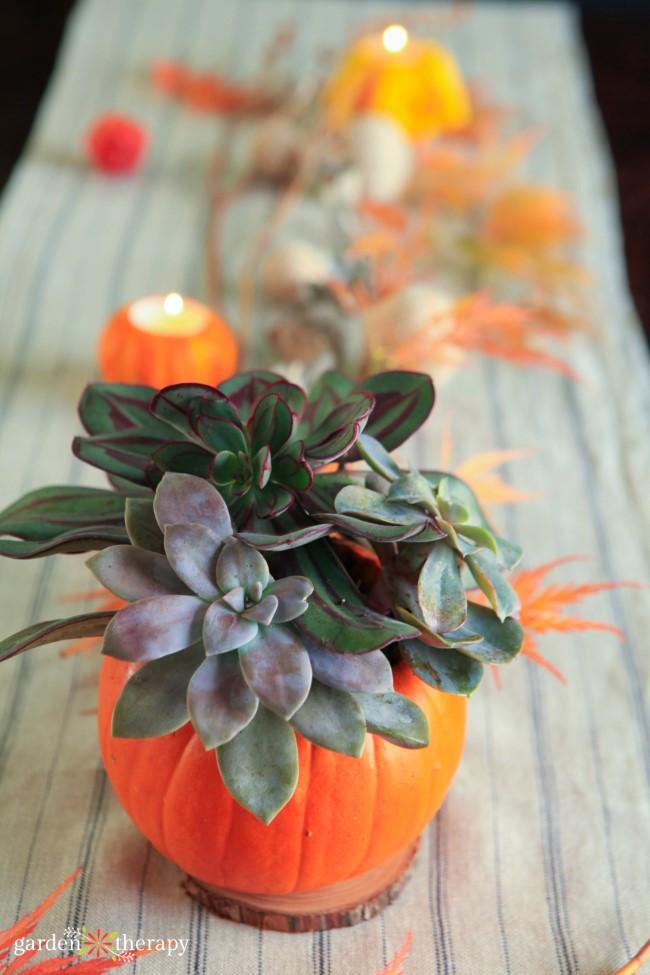 Succulent pumpkin Table setting