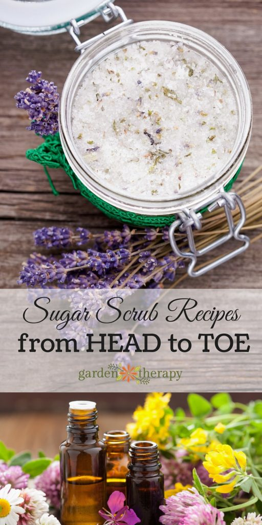 Sugar Scrubs - recipes for the unique skin from head to toe