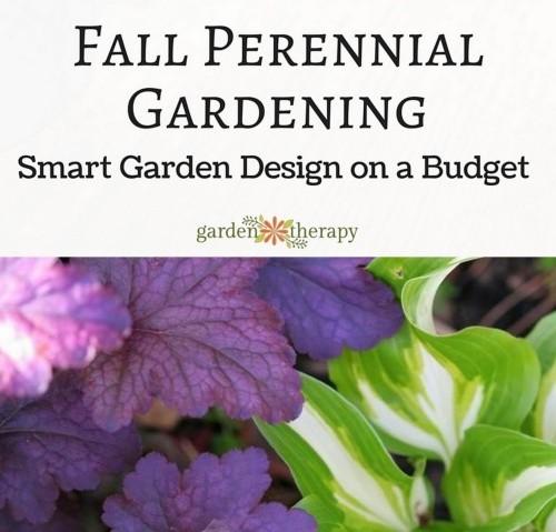 Fall Perennial Gardening: Garden Design on a Budget