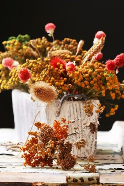 Preserving the Ornamental Garden: How to Dry Flowers, Leaves, Stems, and Pods for Crafting