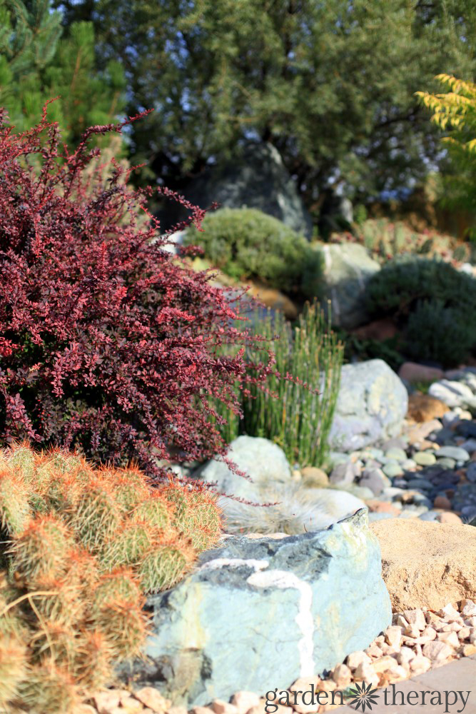 water wise landscape design ideas