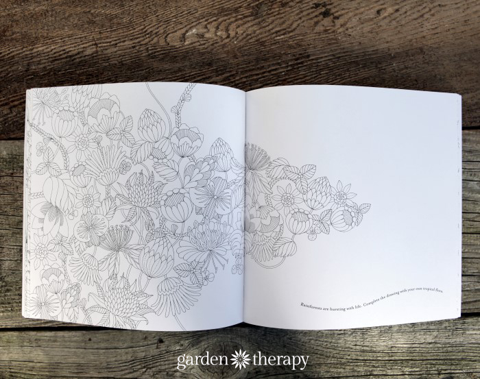 Adult coloring Tropical World Inside