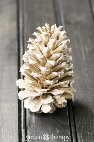 Elegant + Upscale Pinecone Crafts