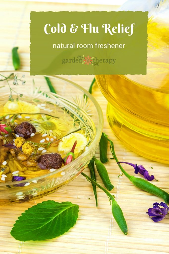Cold and Flu Relief Simmering Spices Natural Air Freshener