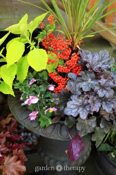 Plants and container design to brighten up the shade. These plants are bursting with color and well-suited to shady conditions.