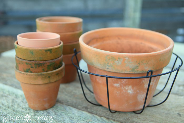 DIY succulent planter with terracotta pots