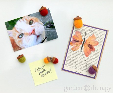 Felted Acorn Magnets and Pressed Leaf Cards from the book Garden Made