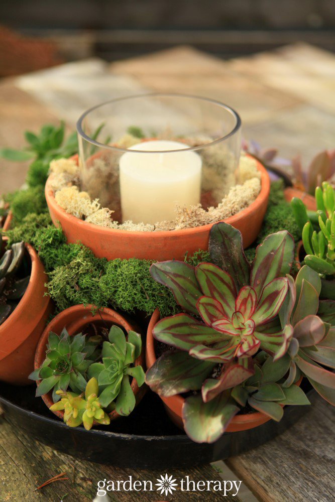Gorgeous outdoor centerpiece with succulents and terracotta pots