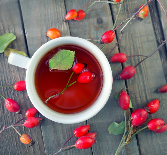 how to make fresh rose hip tea