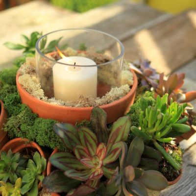 Make This Stunning Terracotta Pot Succulent Centerpiece