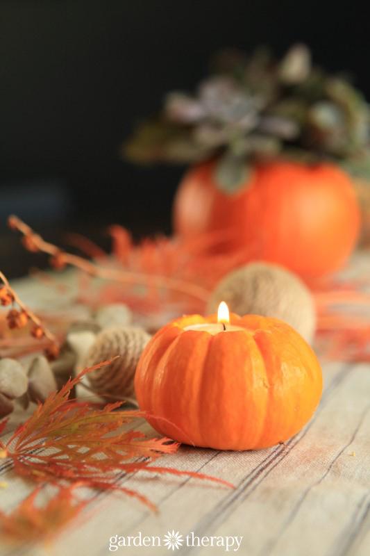 Pumpkin Candles from the book Garden Made