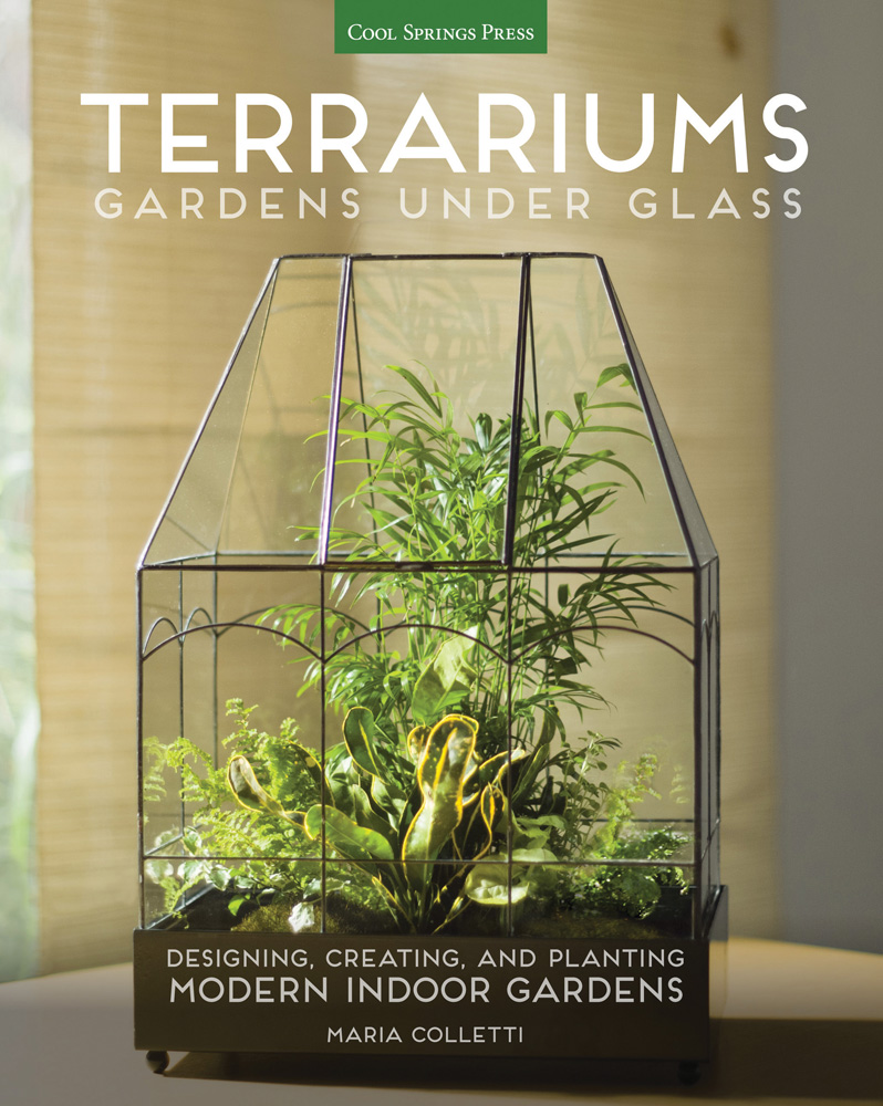 Terrariums Gardens Under Glass