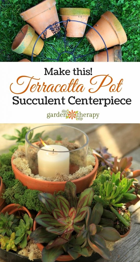 terracotta pot succulent centerpiece