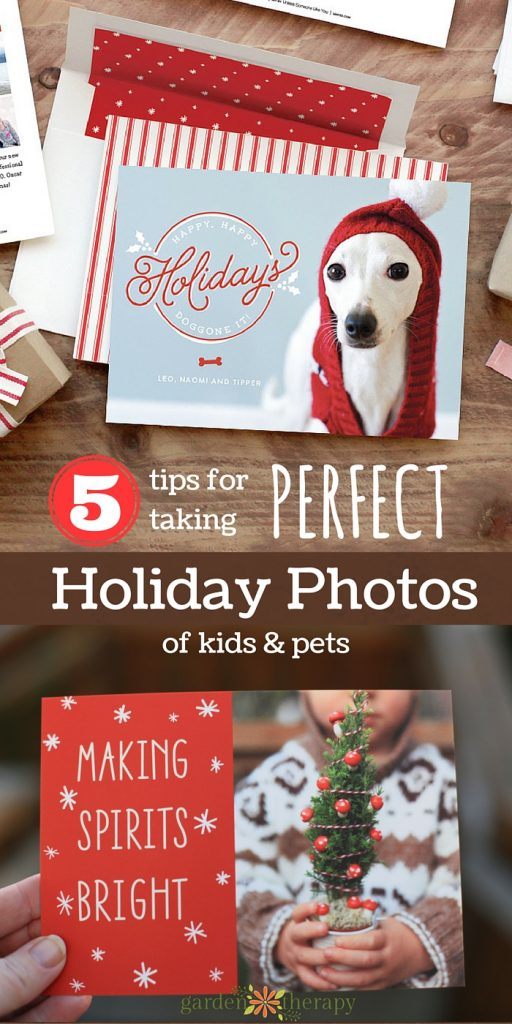 Five tips for taking great photos for Holiday Cards