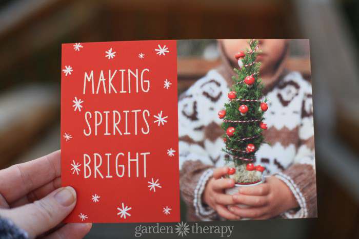 Garden Therapy Holiday Cards