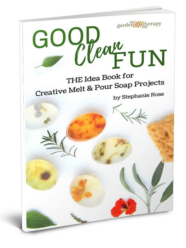 Good Clean Fun: THE Idea Book for Creative Melt & Pour Soap Projects