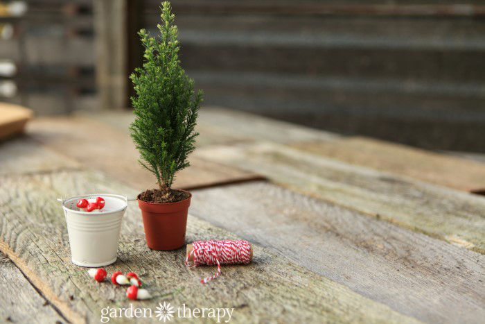 How to Make a Gnome Minaiture Tree (3)