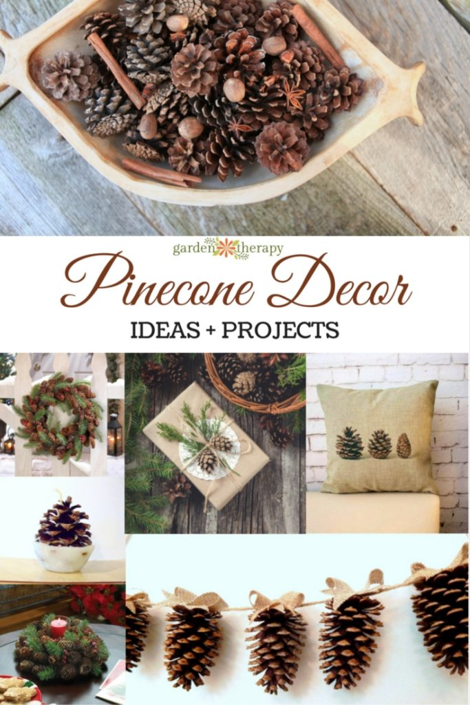 Pinecone Decor and Craft Ideas Guide