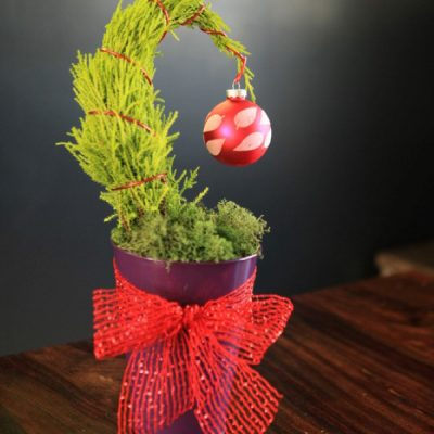 A Small Tree With a Big Message: DIY Grinch Tree