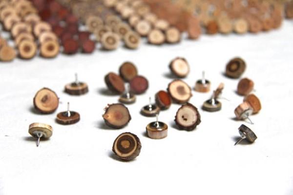 wood slice thumbtacks