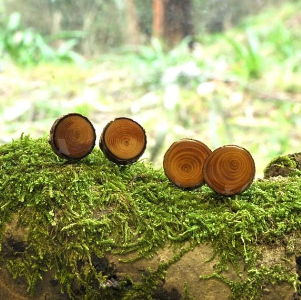 branch slice earrings