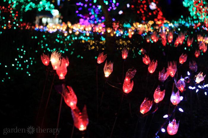 DIY Tulip Garden Lights (2)