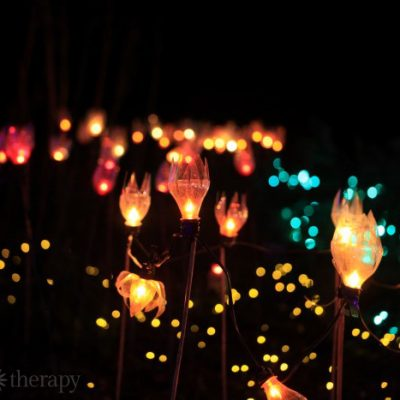These DIY Outdoor Garden Lights Will Take Your Breath Away!