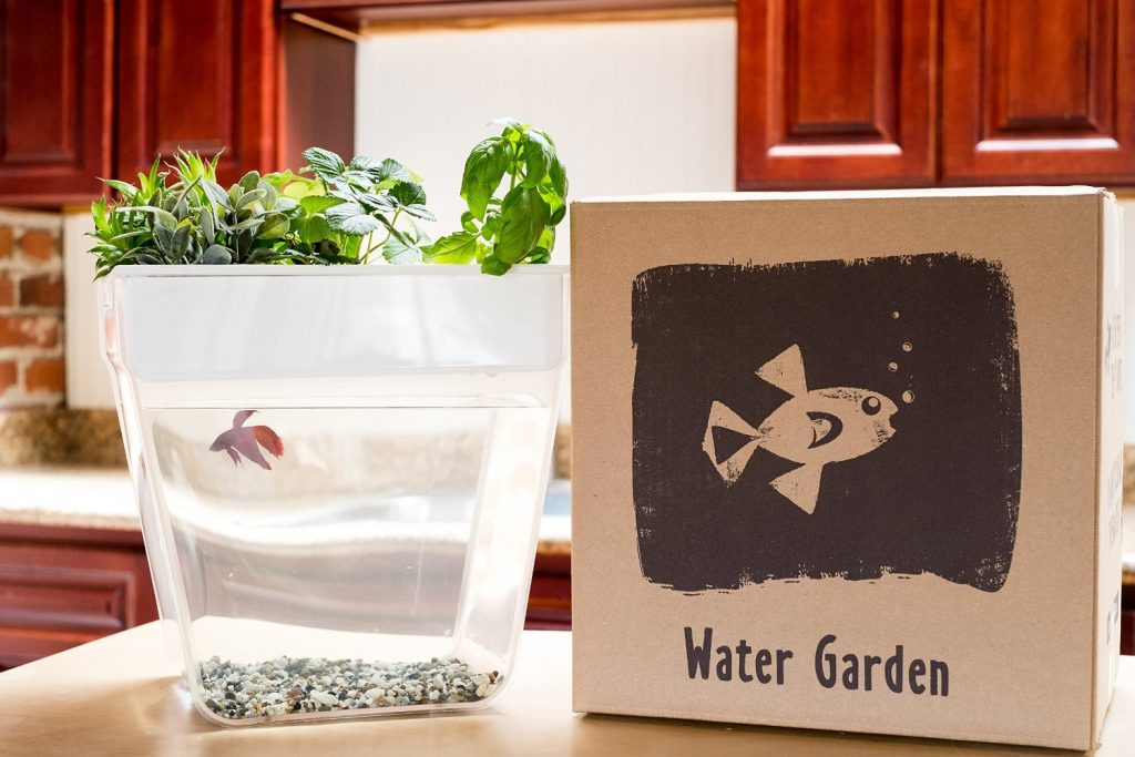 Uniquely creative gifts for gardeners nature lovers for Gifts for fishing lovers