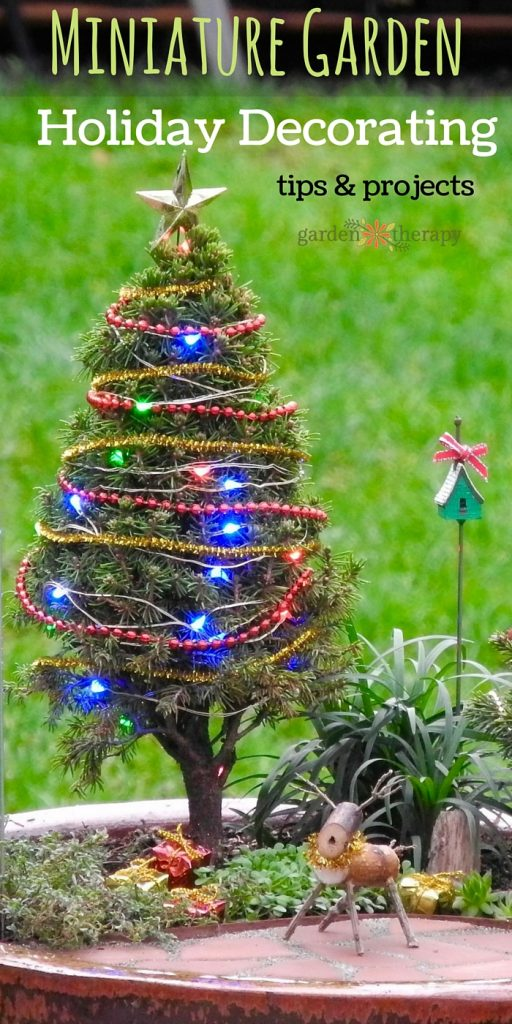 how to choose and care for outdoor miniature trees and diy decorations - Miniature Christmas Tree Decorations