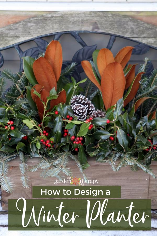 How to design a Winter Planter (1)