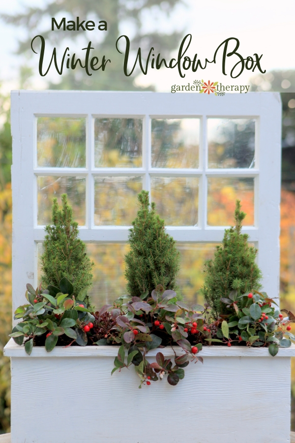 Make a Winter Window Box