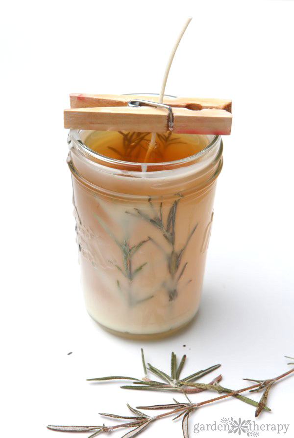 Pressed herb candles